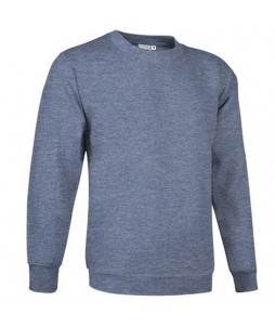 Sweat professionnel personnalisable DUBLIN 295g